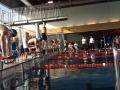 kelkheimer-schwimmclub-dms-2-2017-2